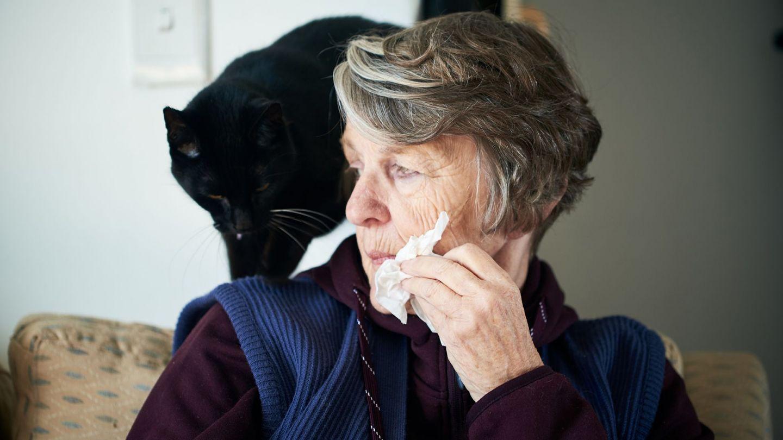 Tierallergie: Eine Frau sitzt auf einem Stuhl, auf dessen Lehne ein schwarzer Kater sitzt. Mit einer Hand hält die Frau ein Taschentuch an ihr Gesicht.