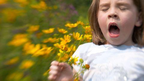 Ein Mädchen steht in einer Blumenwiese und hält mehrere kleine Sonnenblummen in einer Hand. Das Mädchen hat den Mund geöffnet, die Augen geschlossen und muss niesen. Offenbar reagiert sie allergisch auf die Pflanzen um sich herum.