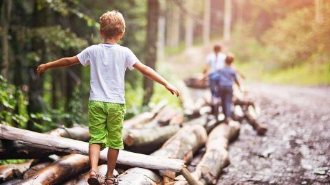 Kinder spielen an einem Waldweg, ein Junge balanciert mit ausgebreiteten Armen auf einem Baumstamm.
